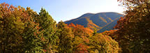 Black Rock Mountain Panorama in Fall, Nelson County, VA