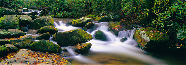 The Roaring Fork, Great Smokey Mountains National Park, TN