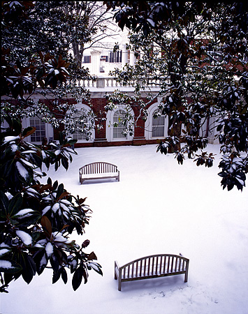 Benches in the Snow, UVA
