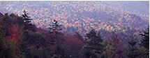 Fall Panorama on the Kancamagus Highway, NH
