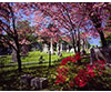 Hollywood Cemetery in Spring, Richmond, VA