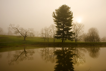 Foggy Morning on a Pantops Mountain Pond, Albemarle County, VA